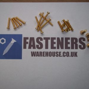 BRASS CHEESE HEAD SCREW SLOTTED/BOLT AND NUT